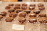Photographs from the Ottawa Cookie Jam 2013