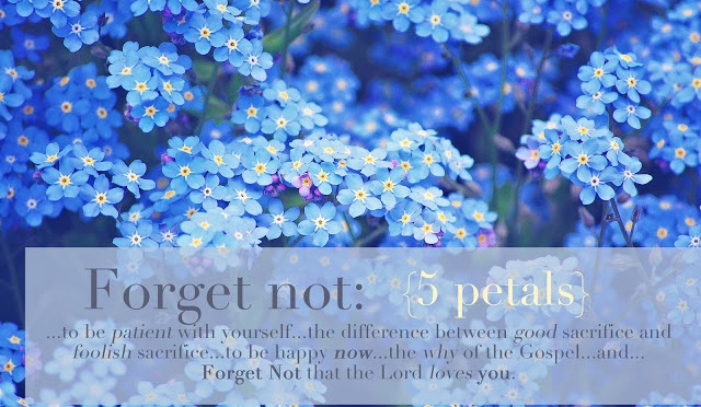 Blooming Forget Me Not